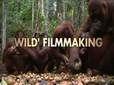 Born to be Wild 3D (On Location: Wild Filmmaking)